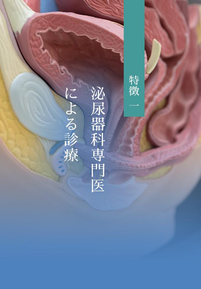 泌尿器科専門医による診療